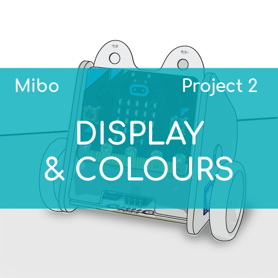 PROJECT 2 - DISPLAY AND COLOURS